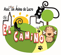 logo-gatos3peq